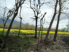Way to Pahalgam