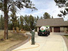 Tree Services of Omaha: Tree Spraying in Omaha, Nebraska