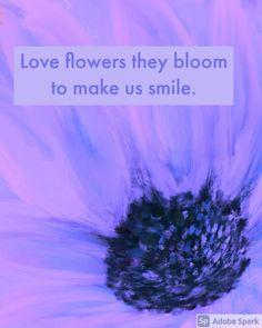 They make me smile Love Flowers, Contemporary Artists, Make Me Smile, My Arts, Bloom, How To Make