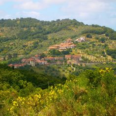 Stay in Southern #Italy in a house with incredible views FREE via housesitting, see details by clicking on the above image of the incredible views that you could enjoy soon!