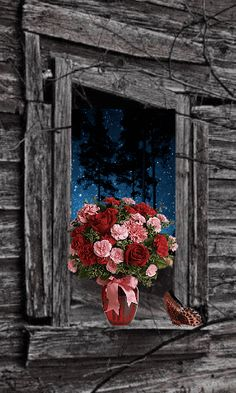 Foto Gif, Gif Photo, Photo Art, Beautiful Flowers Wallpapers, Beautiful Gif, Whats Wallpaper, Animated Love Images, Animated Clipart, Splash Images
