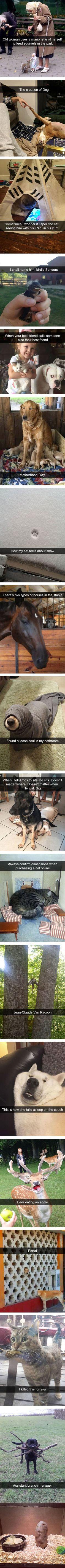 Animal Snapchats Guaranteed To Make You Laugh