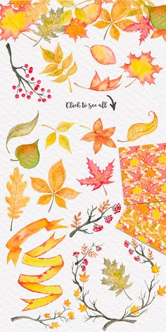 Fall is in the air Autumn Watercolor by Tanya Kart on @creativemarket