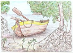 Row Boat In The Mangroves Drawing  - Row Boat In The Mangroves Fine Art Print