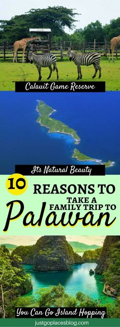 Palawan in the Philippines is abolsoutely GOR-GE-OUS! Learn why you need to include it in your bucket list + what are the best things to do in Palawan with kids, beyond the beaches of course! | Palawan itinerary | Palawan Philippines | Palawan travel tips #palawan #philippines #familytravel - via @justgoplaces #JapanTravelWhatToDo