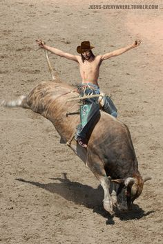 Here is the latest in a series of examinations into urban legends about bull riding and whether they are true or false. BULL RIDING URBAN LEGEND: Bull riders get bulls to buck by pulling on straps … Madison Square Garden, Rodeo Events, Professional Bull Riders, Bucking Bulls, Rodeo Cowboys, Rodeo Life, Bull Riding, Riding Hats, Cowboy And Cowgirl