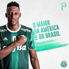 Maior do Brasil e das Américas! # Palmeiras #