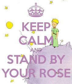 alguien me dijo hace tiempo que yo era la rosa, con mis tres espinas....para defenderme del mundo...