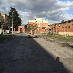 L'ospedale di Lucca ieri sembrava uscito da #WalkingDead ! #ospedale #Lucca