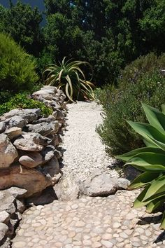 Saldahna Bay, Western Cape, South Africa  Franchesca Watson | Garden Designer