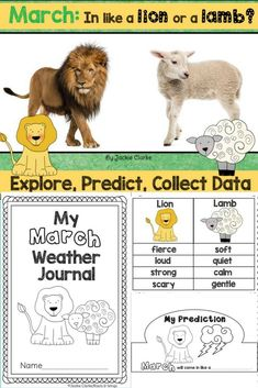 March: In Like a Lion, Out Like a Lamb (A Data Collection Project)