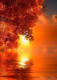 Какая удивительная красота в закатах...
