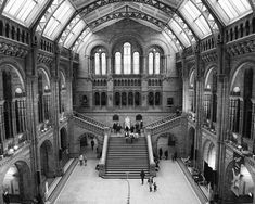 London Print Natural History Museum Black and White