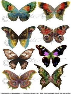 Fantasy Fairy Wings Digital Collage Sheet by AlteredArtifacts Butterfly Fairy, Butterfly Wings, Dragonfly Wings, Butterfly Images, 1 Tattoo, Fairy Wings, Fairy Land, Digital Collage, Collage Sheet