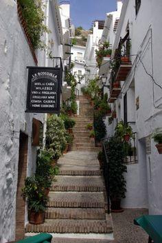 Foto einer Gasse in Frigiliana (Costa del Sol, Andalusien)