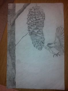 Bird and Pine cone