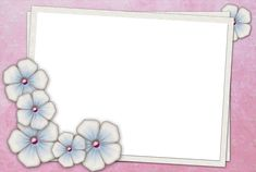 Large Pink Transparent Frame with Flowers