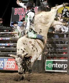 Well it's bulls and blood   It's dust and mud   It's the roar of a Sunday crowd   It's the white in his knuckles   The gold in the buckle   He'll win the next go 'round   It's boots and chaps   It's cowboy hats   It's spurs and latigo   It's the ropes and the reins   And the joy and the pain   And they call the thing rodeo