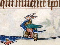 rabbit dragonhttp://discardingimages.tumblr.com  Gorleston Psalter, England 14th century. British Library, Add 49622, fol. 165v