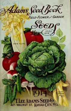 1914 - Adams seed book : - Biodiversity Heritage Library