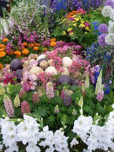 # flower #