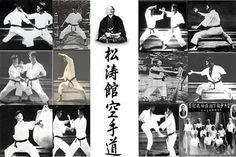 A problemática questão das artes marciais clássicas