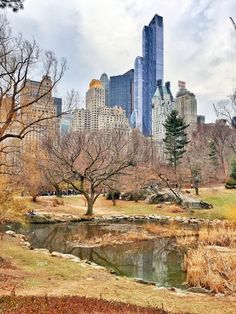 Lovely spring day at the pond in Central Park by Gigi Altarejos @gigi_nyc by newyorkcityfeelings.com - The Best Photos and Videos of New York City including the Statue of Liberty Brooklyn Bridge Central Park Empire State Building Chrysler Building and other popular New York places and attractions.