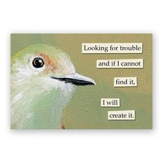 Looking for Trouble Magnet - Bird - Hugs - Humor - Gift - Mincing Mockingbird - Stocking Stuffer