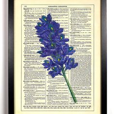 flower vintage dictionary art - Google Search