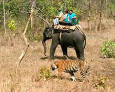 Best Hotel In Jim Corbett Park: Tourist Attractions Points in and Around the Jim C...