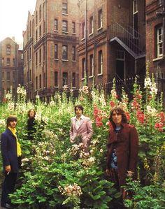 The Beatles with hollyhocks | Tom Murray 1968