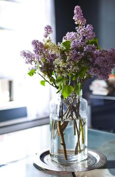 A simple bouquet of lilacs.