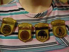 If kids earn Jr. Ranger badges at three National Parks in Alaska, they earn the Alaska Adventurer Badge (far right). Park Service, Cub Scouts, Adventurer, Travel Advice, Badges, Alaska, Jr, Cruise, Hawaii