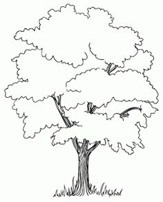 75 Best How to draw realistic Trees, Plants, Bushes and