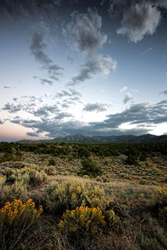 #tom troutman #new mexico#photography
