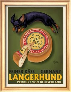 Langerhund Feiner Kase - Dachshund Giclee Print by Chad Otis at Art.com