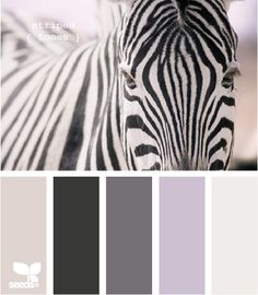 Smokey Gray striped tones from Design Seeds!  Love it!