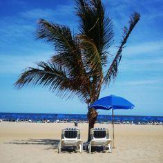 Ocean Place Resort & Spa