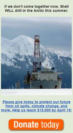 If we don't put it all on the line now, Shell's rigs will be drilling in the Arctic in less than 100 days. We cannot give up! Your support can help save the Arctic and the planet from a bleak future. Can you help us reach $15,000?