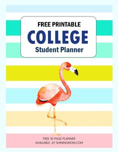 free printable college planner Student Teacher Binder, Student Planner, Printable Day Planner, Free Planner, Motivational Quotes For Students, Inspirational Posters, College Planner, School Calendar, Free Printables