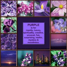 Purple is...one of my very fave colors.