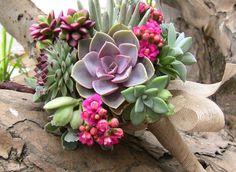 Veja como fazer um terrário de plantas suculentas, quais são as espécies mais utilizadas e como cuidar das suas plantinhas!