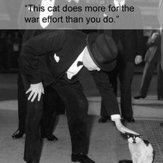 On Conservative politician Rab Butler, in reference to Nelson, his cat: Winston Churchill