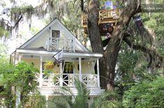 Savannah, GA, treehouse