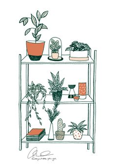 #botanicalliving # illustration #vector #greenliving #botanical #larabispinck #everywhereyougo #poster #plants #home #decoration #shelf #inspiration #leafs