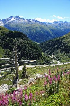Switzerland, Canton Valais, Rhone Valley at Grimsel Pass and Furka Pass