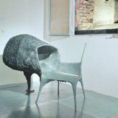 Evolution, 2008, Nacho Carbonell.