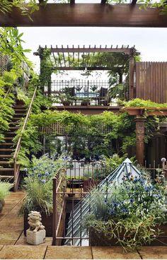 Rooftop Garden in Chelsea, NYC.