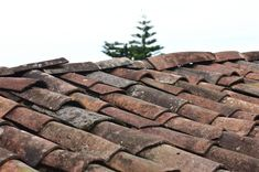 Repairing a roof involves high levels of risks. Let us check this troubleshooting guide to find the roof problems and repair them at the right time. Roofing Companies, Roofing Services, Roofing Contractors, Roof Cleaning, Commercial Roofing, Roof Types, Roof Repair, Metal Roof, Free Stock Photos