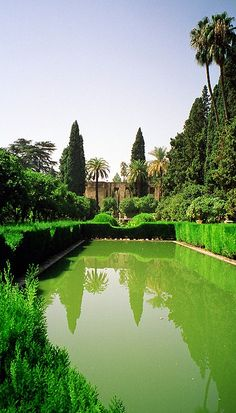 27 Best Islamic Gardens Images In 2019 Garden Garden